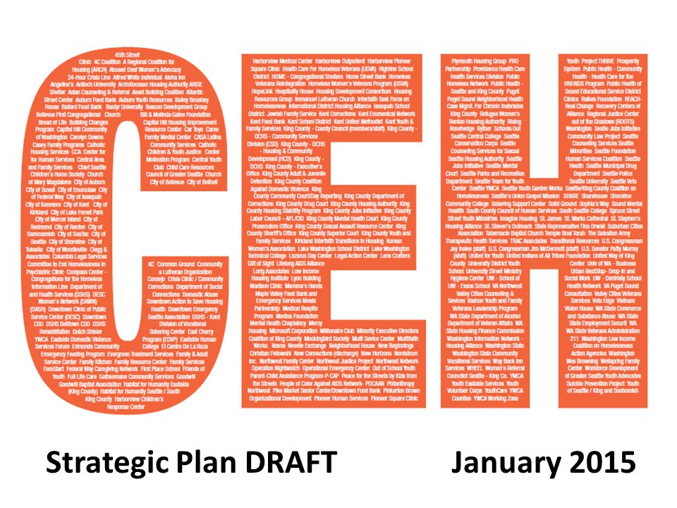 Strategic Plan DRAFT January 2015