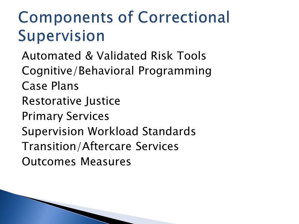 Automated & Validated Risk Tools Cognitive/Behavioral Programming Case Plans Restorative Justice Primary Services Supervision Workload Standards Trans