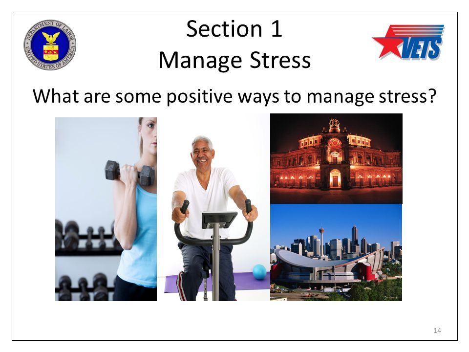 Section 1 Manage Stress What are some positive ways to manage stress? 14
