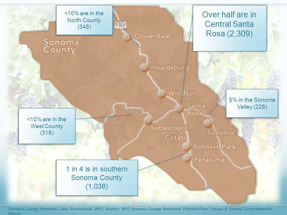Over half are in Central Santa Rosa (2,309) 5% in the Sonoma Valley (228) <10% are in the North County (349) <10% are in the West County (318) 1 in 4 is in southern Sonoma County (1,038)