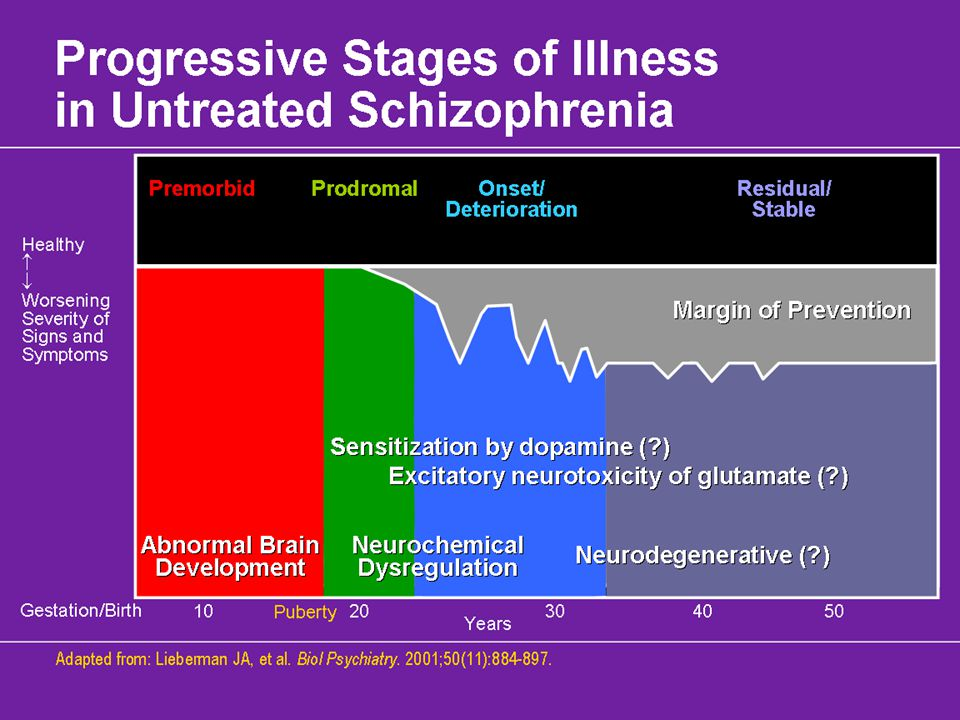 Progressive Stages of Illness in Untreated Schizophrenia