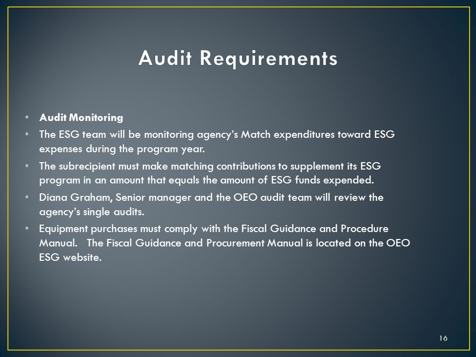 Audit Monitoring The ESG team will be monitoring agency's Match expenditures toward ESG expenses during the program year.