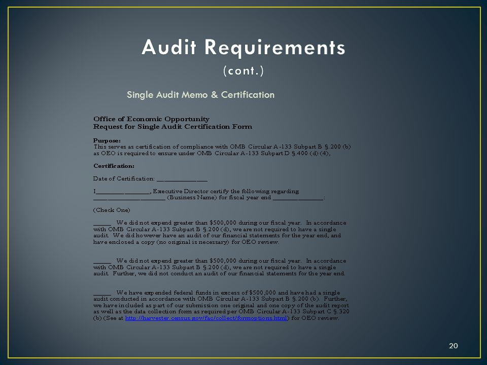 Single Audit Memo & Certification 20