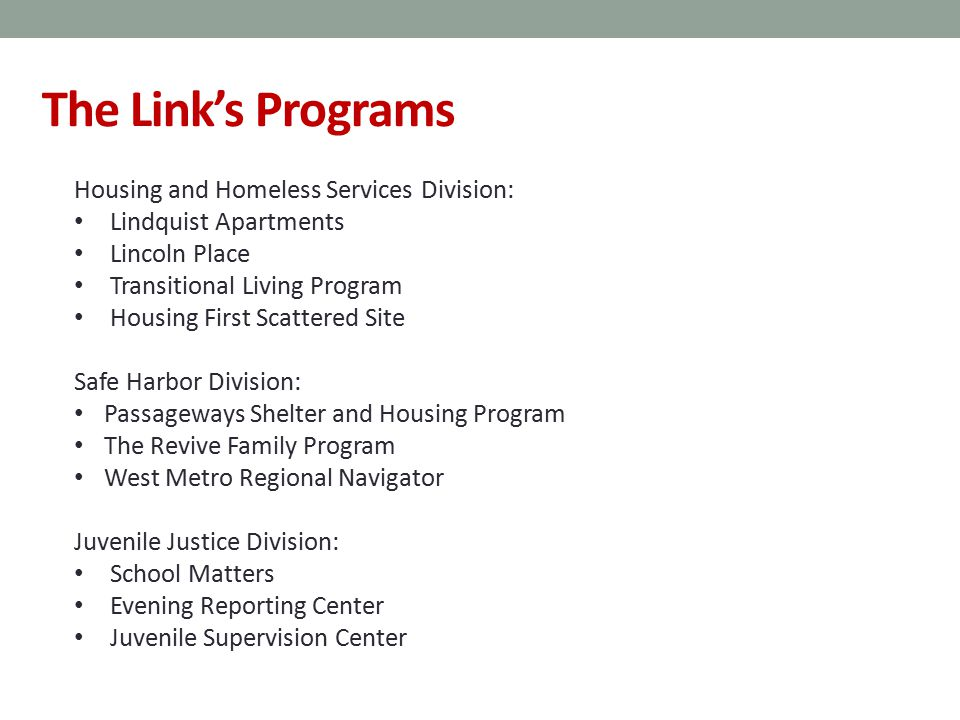 The Link's Programs Housing and Homeless Services Division: Lindquist Apartments Lincoln Place Transitional Living Program Housing First Scattered Site Safe Harbor Division: Passageways Shelter and Housing Program The Revive Family Program West Metro Regional Navigator Juvenile Justice Division: School Matters Evening Reporting Center Juvenile Supervision Center