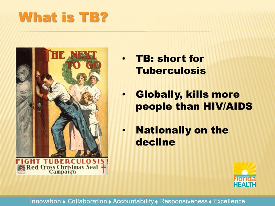 Innovation   Collaboration   Accountability   Responsiveness   Excellence What is TB.