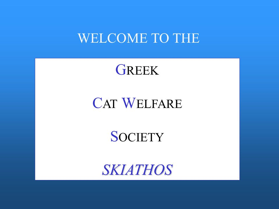 G REEK C AT W ELFARE S OCIETY SKIATHOS WELCOME TO THE