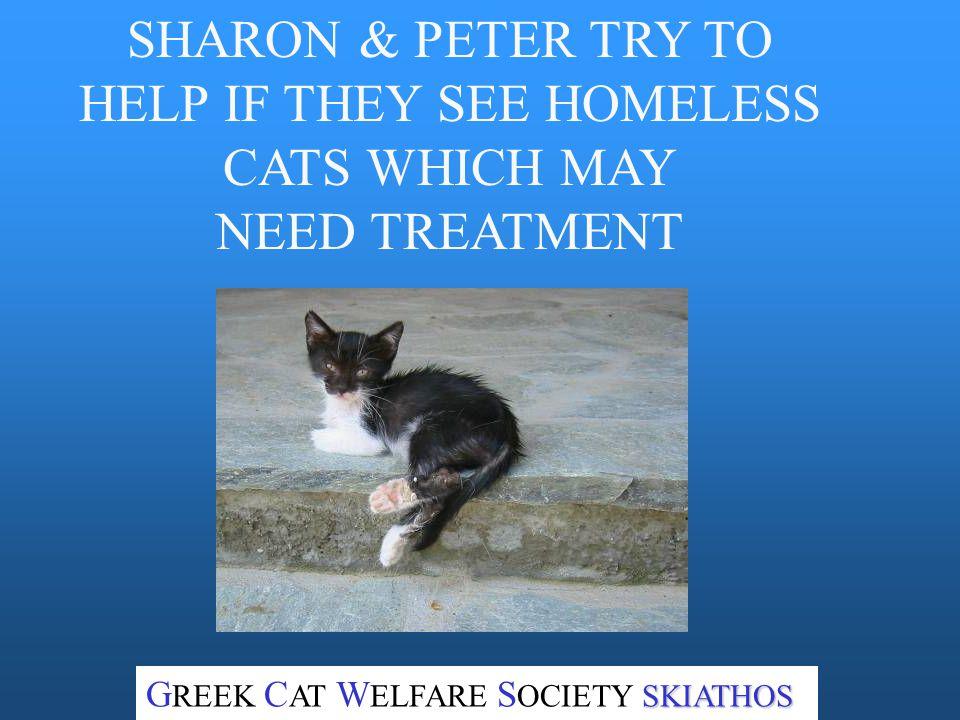 ALSO, THE ISLAND HAS MANY HOMELESS CATS NEEDING HELP SKIATHOS G REEK C AT W ELFARE S OCIETY SKIATHOS