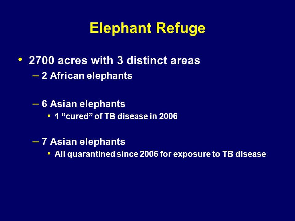 "Elephant Refuge 2700 acres with 3 distinct areas – 2 African elephants – 6 Asian elephants 1 ""cured"" of TB disease in 2006 – 7 Asian elephants All qua"