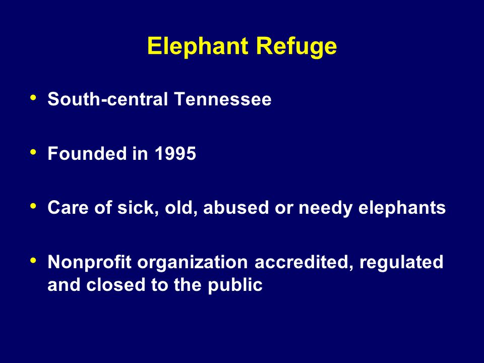 Elephant Refuge South-central Tennessee Founded in 1995 Care of sick, old, abused or needy elephants Nonprofit organization accredited, regulated and closed to the public