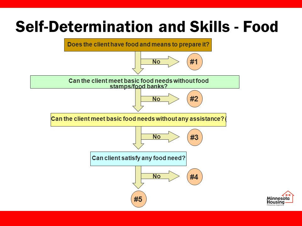 Self-Determination and Skills - Food Does the client have food and means to prepare it.