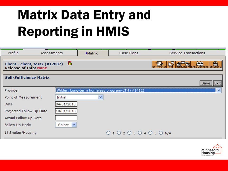 Matrix Data Entry and Reporting in HMIS