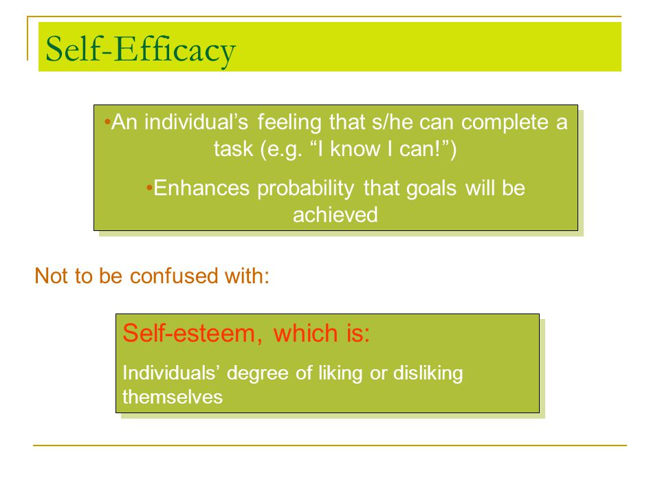 Self-Efficacy Self-esteem, which is: Individuals' degree of liking or disliking themselves Self-esteem, which is: Individuals' degree of liking or dis
