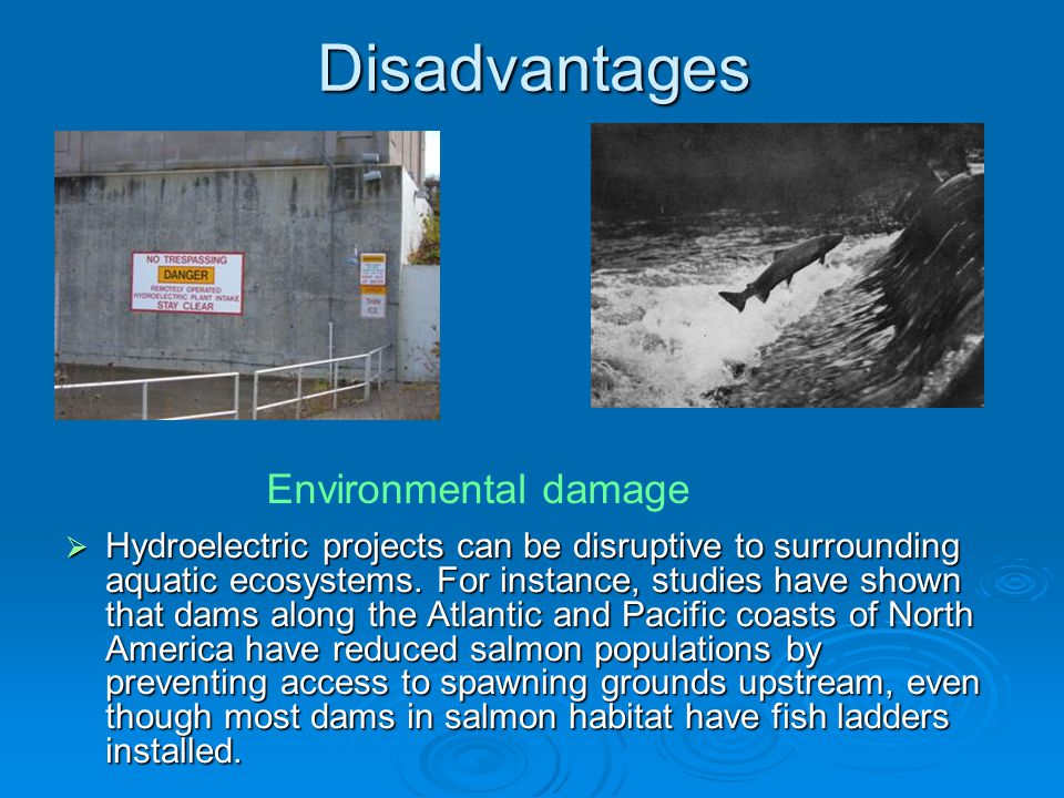 Disadvantages  Hydroelectric projects can be disruptive to surrounding aquatic ecosystems. For instance, studies have shown that dams along the Atlan