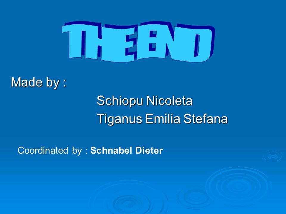 Made by : Schiopu Nicoleta Tiganus Emilia Stefana Coordinated by : Schnabel Dieter