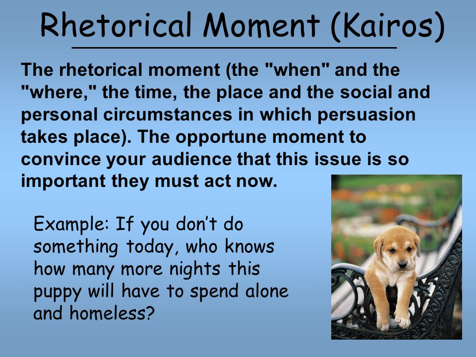 Rhetorical Moment (Kairos) Example: If you don't do something today, who knows how many more nights this puppy will have to spend alone and homeless.