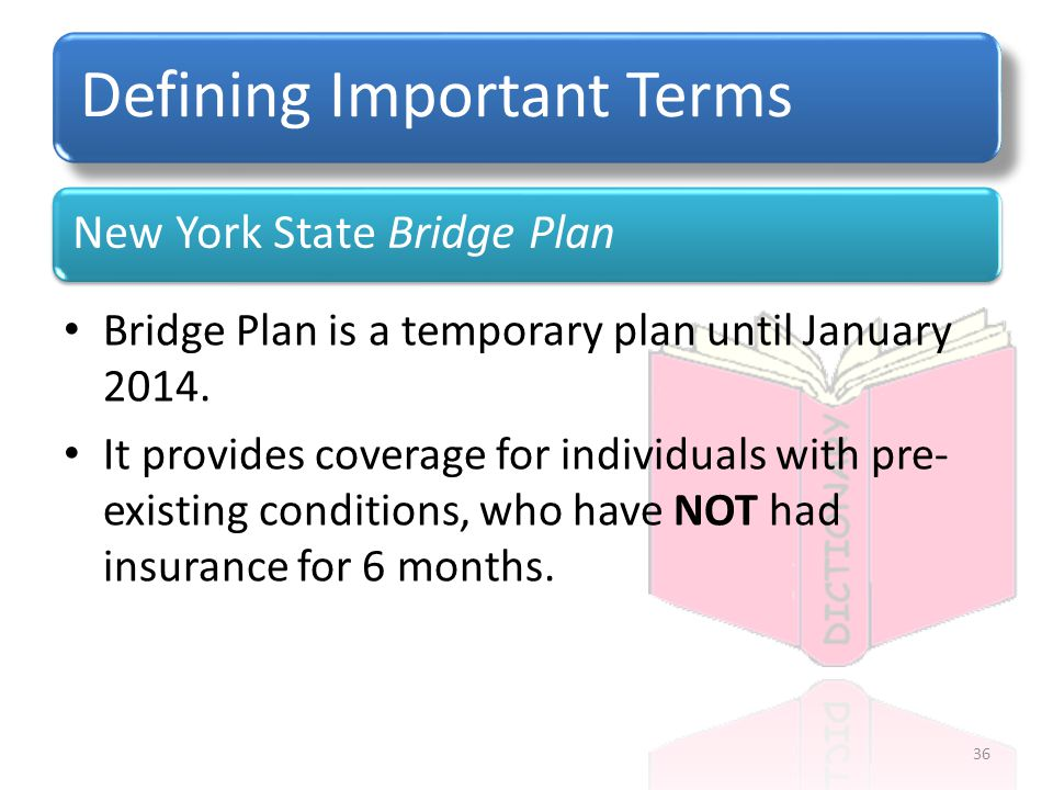 New York State Bridge Plan Defining Important Terms Bridge Plan is a temporary plan until January 2014.