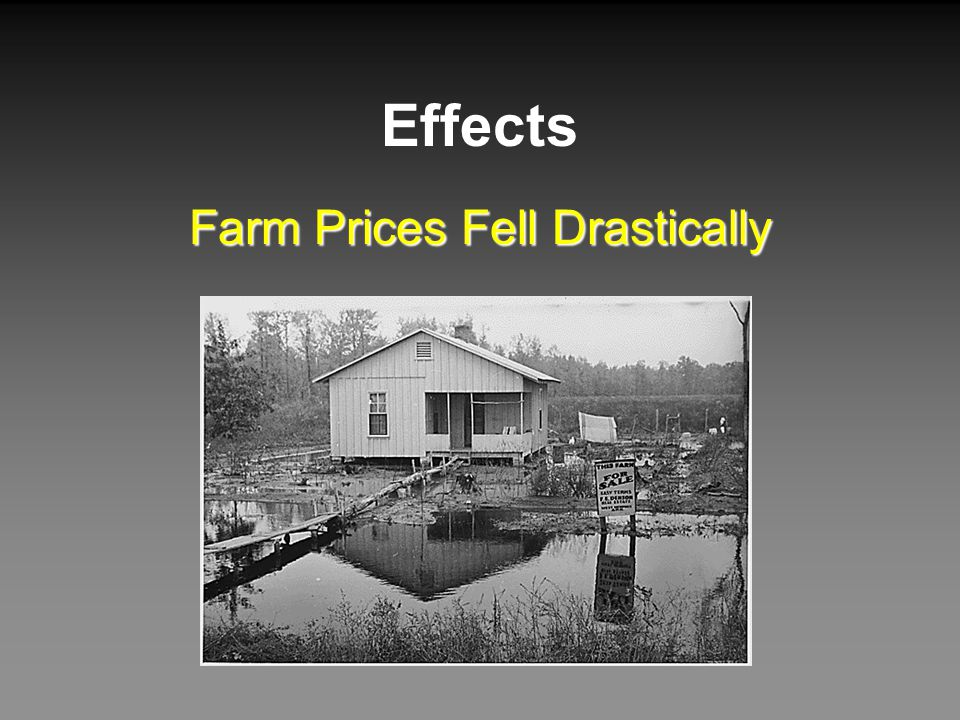 Effects Farm Prices Fell Drastically