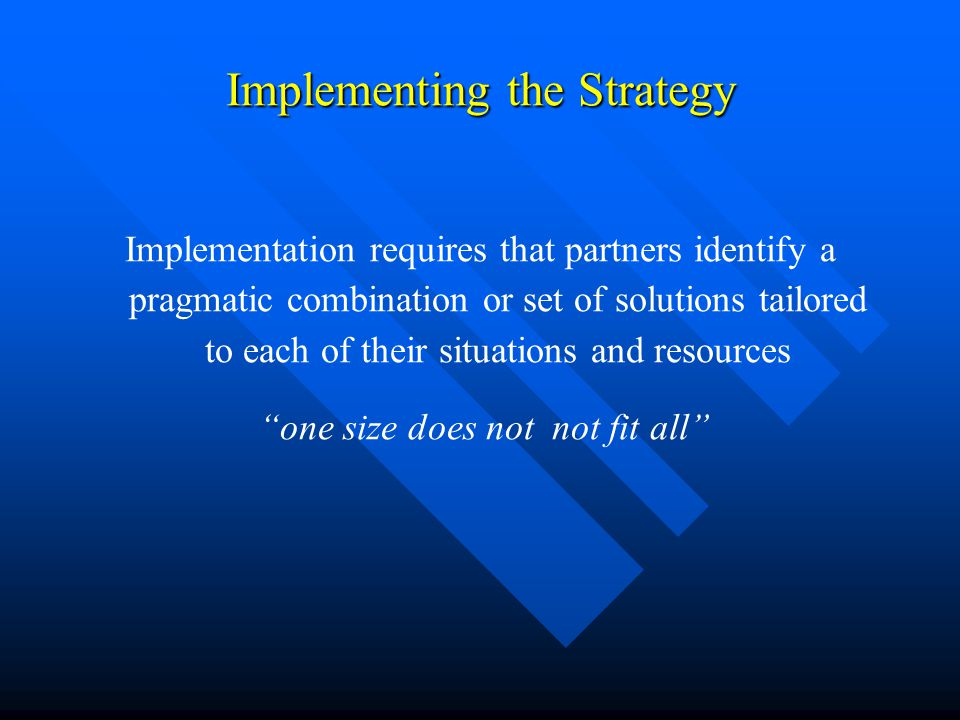 Implementing the Strategy Implementation requires that partners identify a pragmatic combination or set of solutions tailored to each of their situations and resources one size does not not fit all