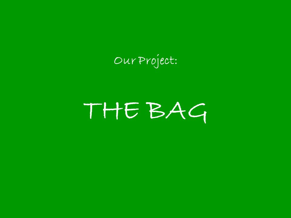 Our Project: THE BAG