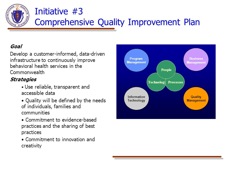 Initiative #3 Comprehensive Quality Improvement Plan Goal Develop a customer-informed, data-driven infrastructure to continuously improve behavioral h