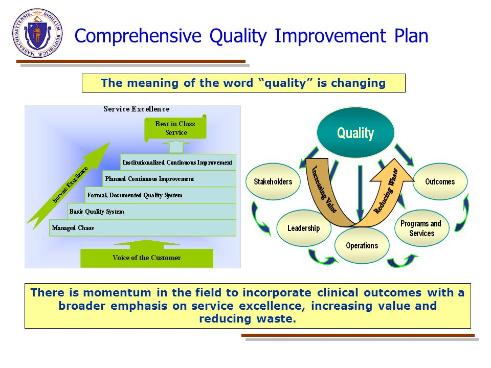 Comprehensive Quality Improvement Plan There is momentum in the field to incorporate clinical outcomes with a broader emphasis on service excellence,