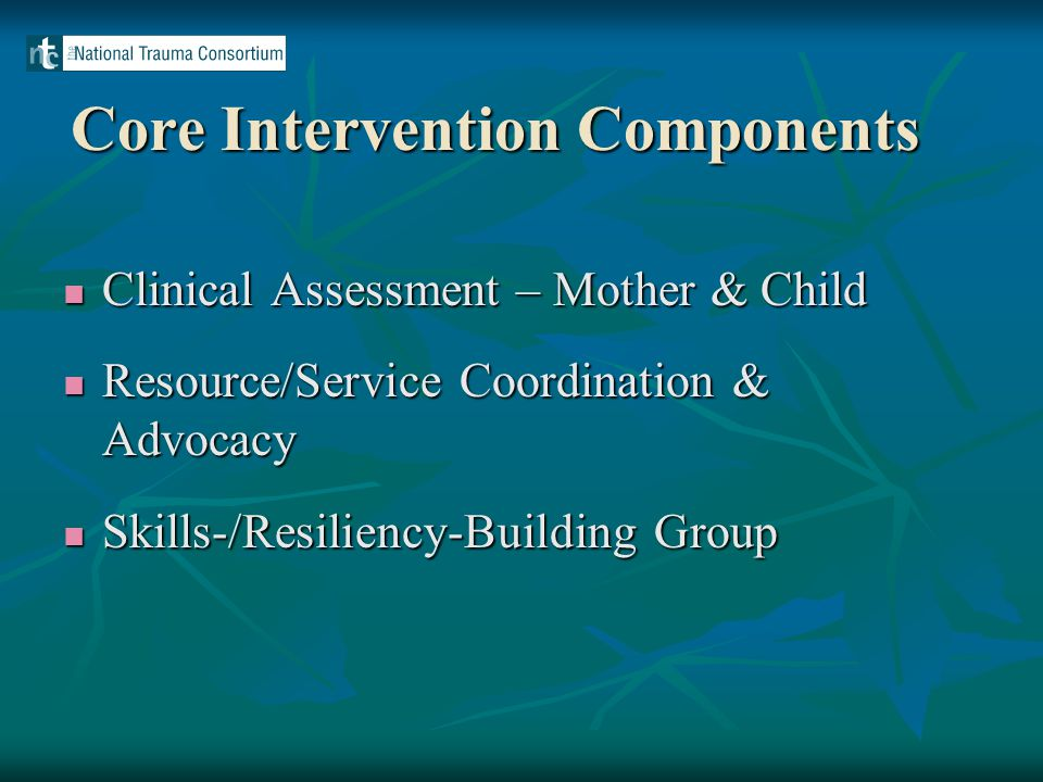 Core Intervention Components Clinical Assessment – Mother & Child Clinical Assessment – Mother & Child Resource/Service Coordination & Advocacy Resource/Service Coordination & Advocacy Skills-/Resiliency-Building Group Skills-/Resiliency-Building Group