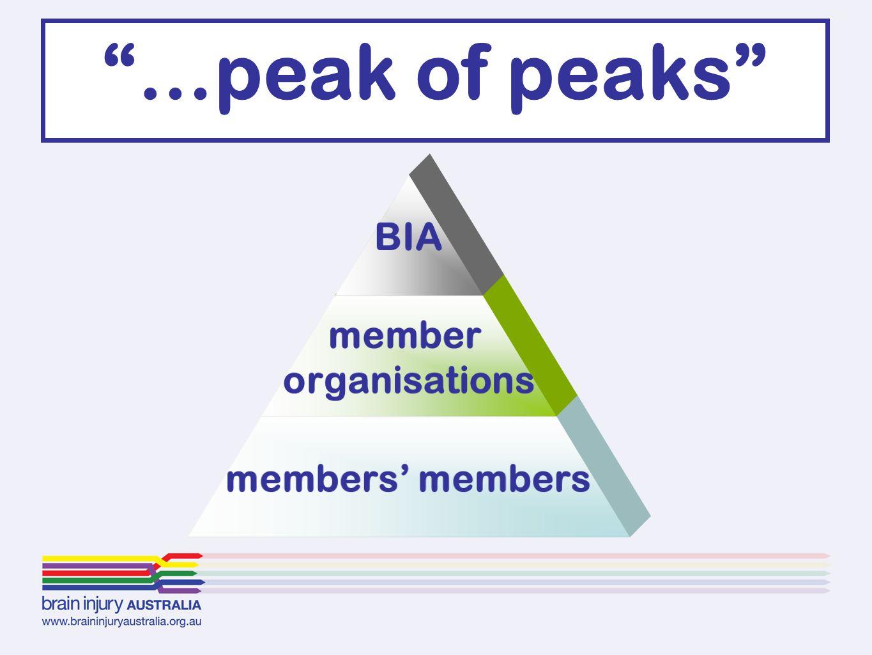 """BIA member organisations members' members """"…peak of peaks"""""""