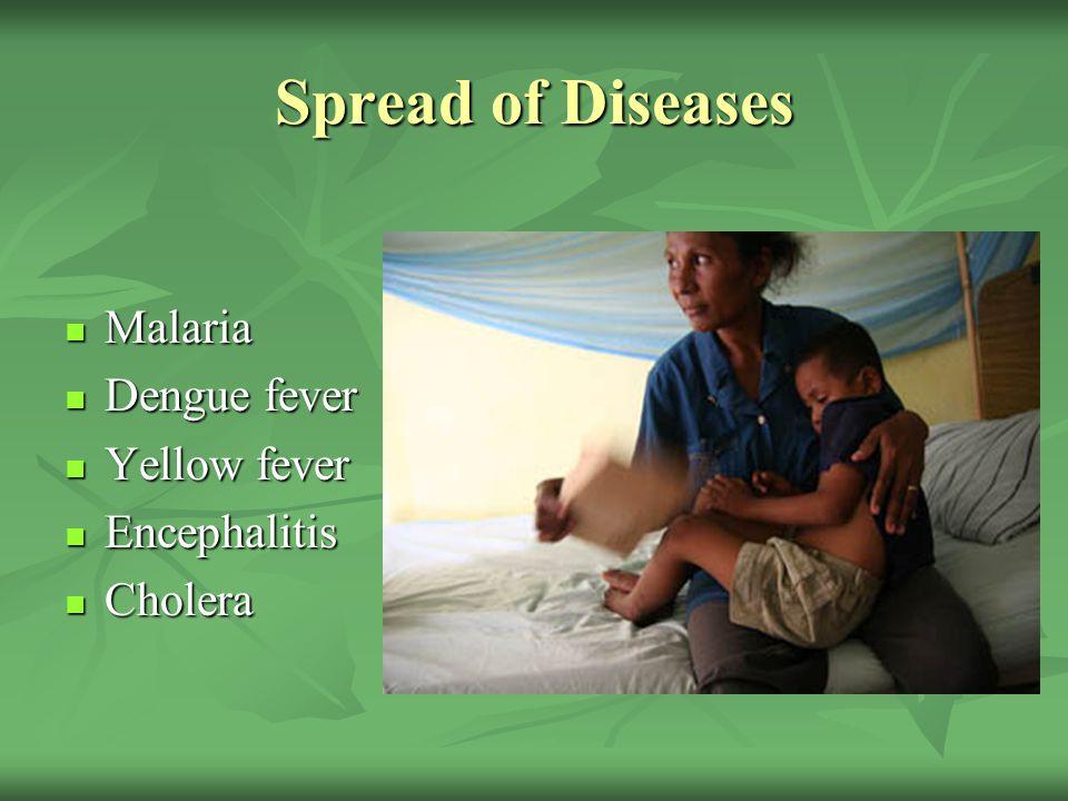 Spread of Diseases Malaria Malaria Dengue fever Dengue fever Yellow fever Yellow fever Encephalitis Encephalitis Cholera Cholera