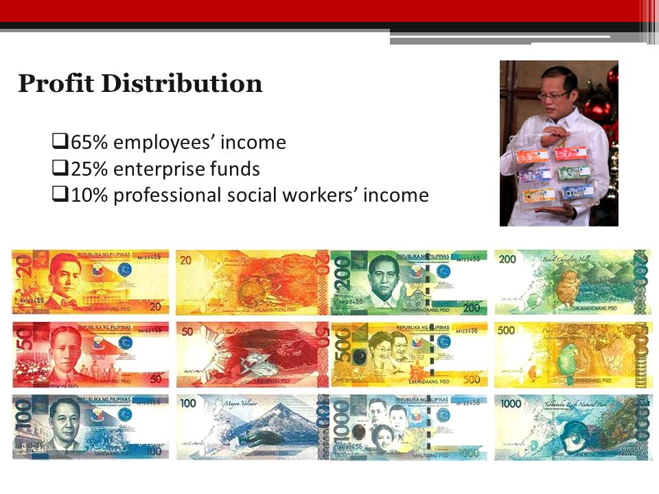 Profit Distribution  65% employees' income  25% enterprise funds  10% professional social workers' income