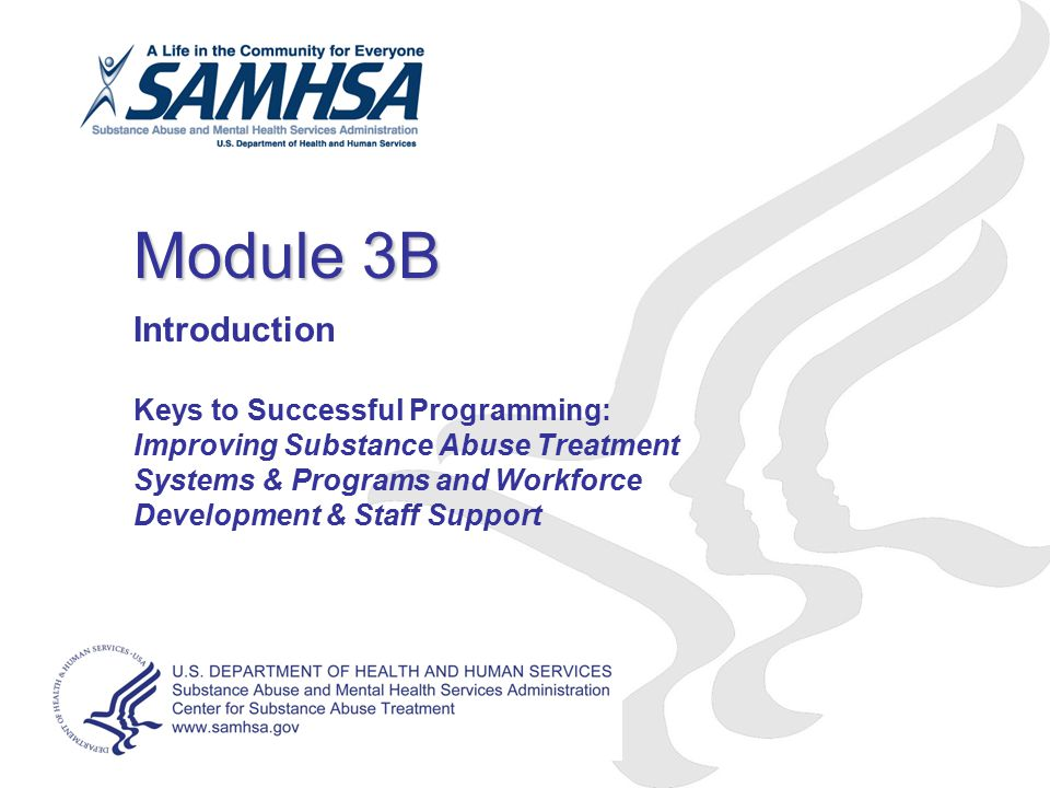 Module 3B Introduction Keys to Successful Programming: Improving Substance Abuse Treatment Systems & Programs and Workforce Development & Staff Support