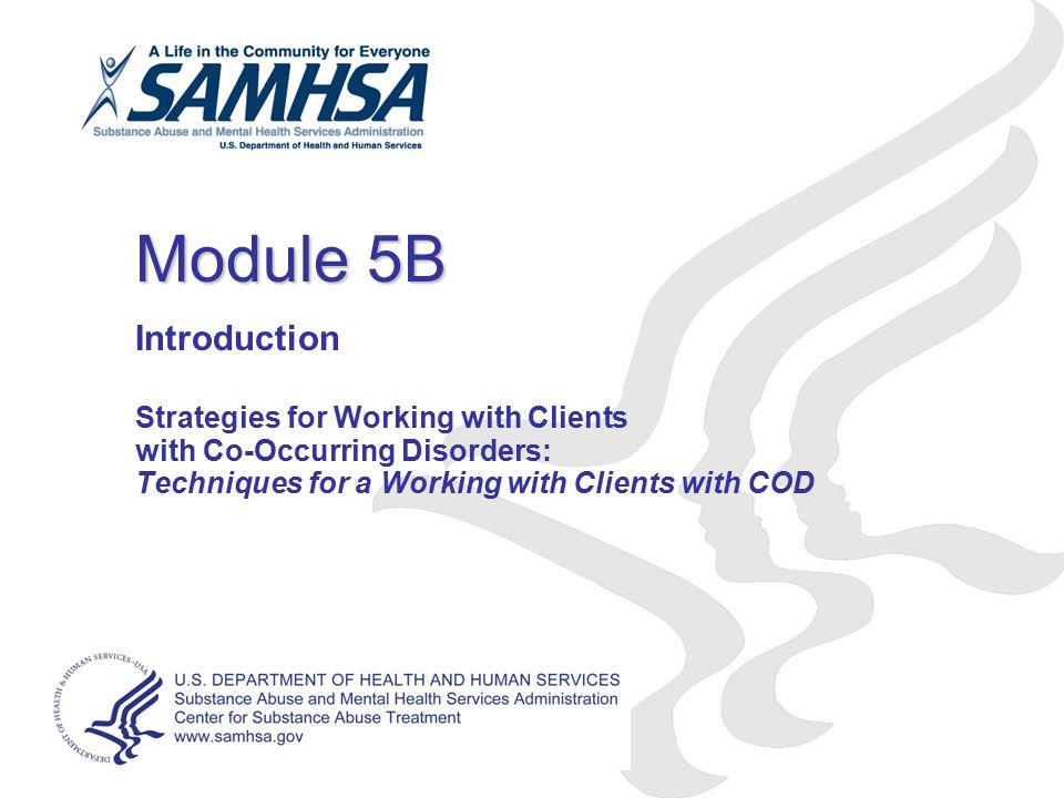 Module 5B Introduction Strategies for Working with Clients with Co-Occurring Disorders: Techniques for a Working with Clients with COD