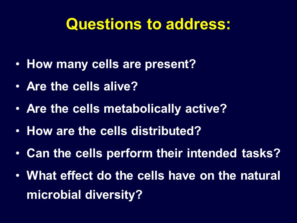 Questions to address: How many cells are present? Are the cells alive? Are the cells metabolically active? How are the cells distributed? Can the cell
