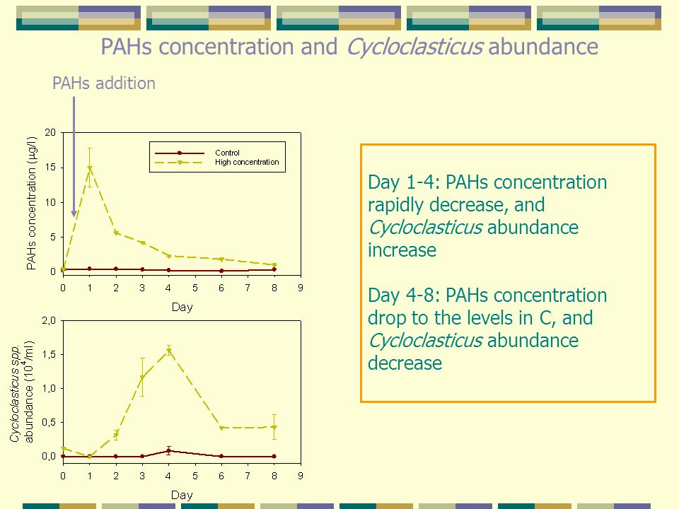 PAHs concentration and Cycloclasticus abundance PAHs addition Day 1-4: PAHs concentration rapidly decrease, and Cycloclasticus abundance increase Day 4-8: PAHs concentration drop to the levels in C, and Cycloclasticus abundance decrease