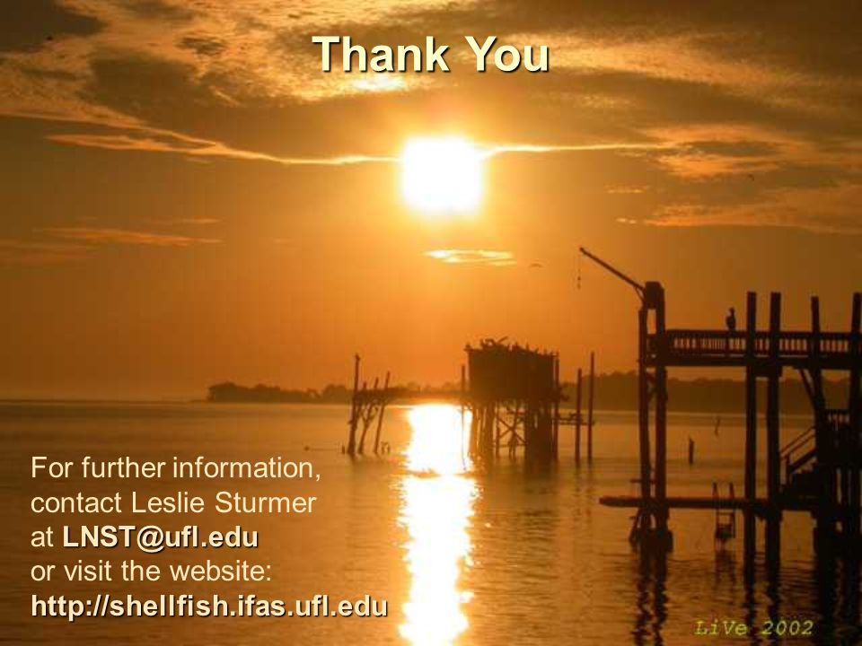 Thank You For further information, contact Leslie Sturmer LNST@ufl.edu at LNST@ufl.edu or visit the website:http://shellfish.ifas.ufl.edu
