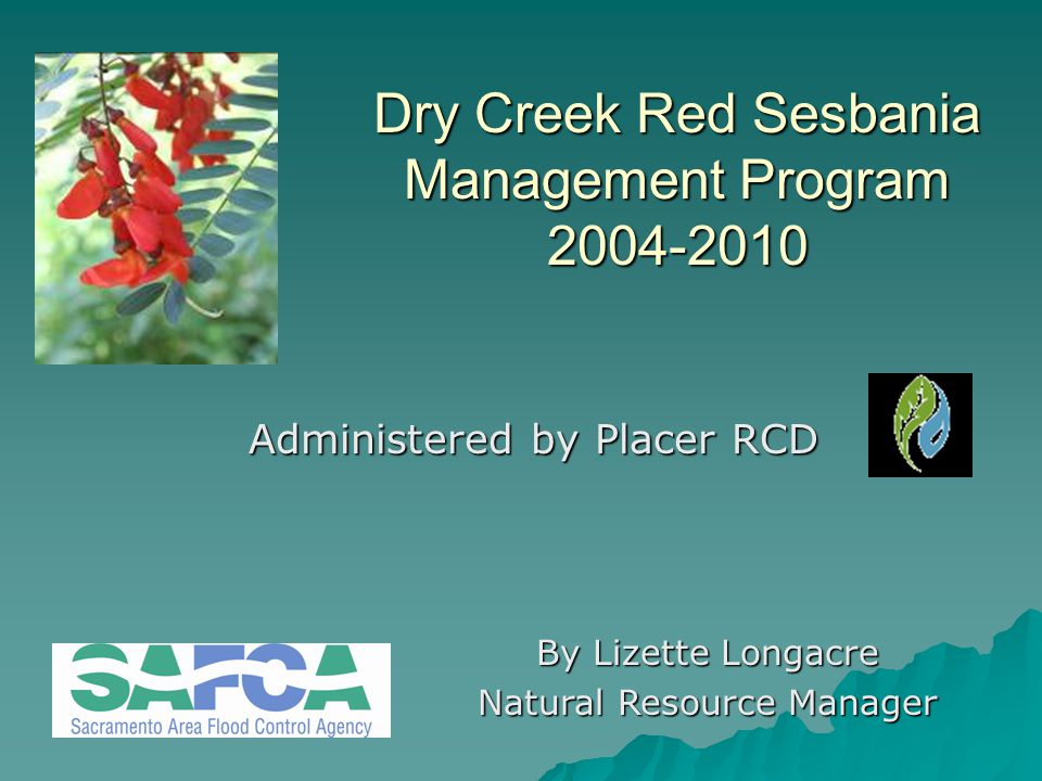 Results  Contractor met performance criterion by removing 99% of red sesbania from Dry Creek Watershed  All seed pods removed from watershed  Increased effort in high water years  2010 - reduced amount of herbicide but no decrease in removal effort to date  No of seedlings/year still high, especially in lower watershed