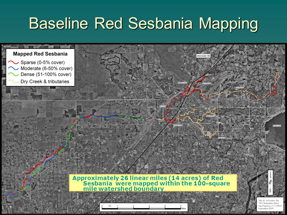 Baseline Red Sesbania Mapping Approximately 26 linear miles (14 acres) of Red Sesbania were mapped within the 100-square mile watershed boundary