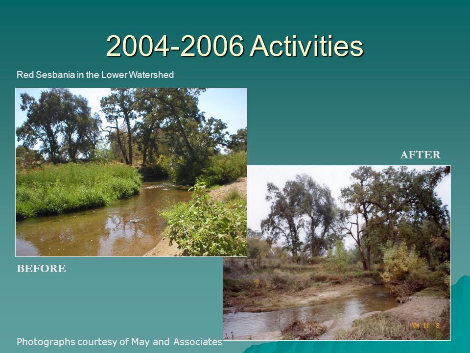 Red Sesbania in the Lower Watershed 2004-2006 Activities BEFORE AFTER Photographs courtesy of May and Associates