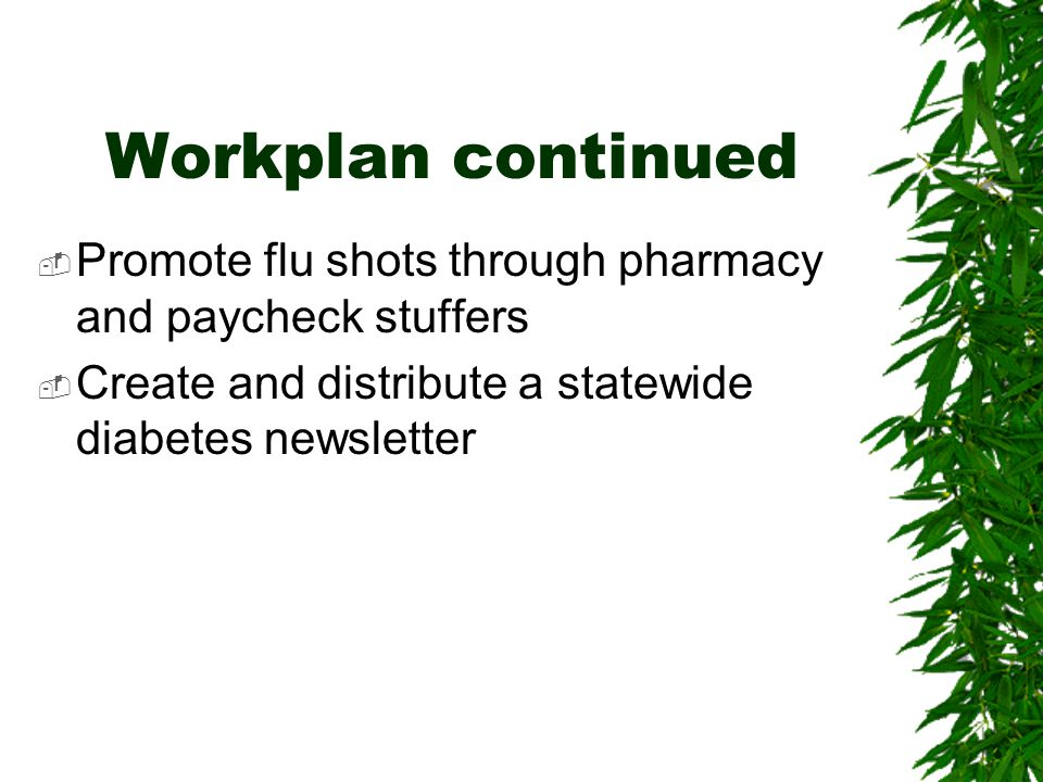 Workplan continued  Promote flu shots through pharmacy and paycheck stuffers  Create and distribute a statewide diabetes newsletter
