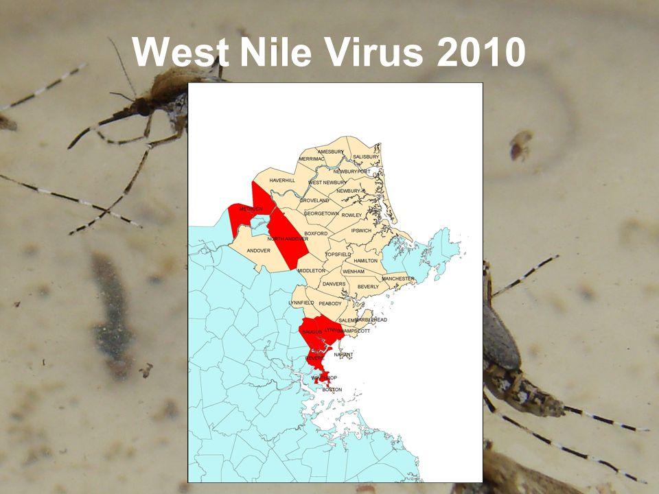 West Nile Virus 2010