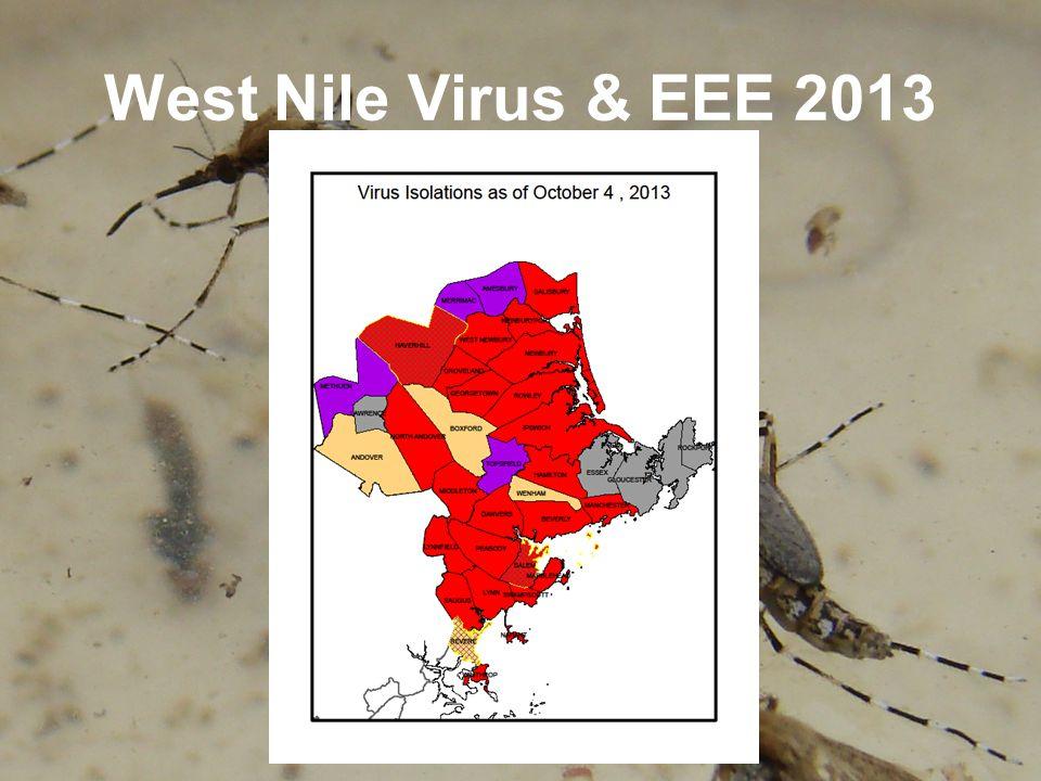 West Nile Virus & EEE 2013