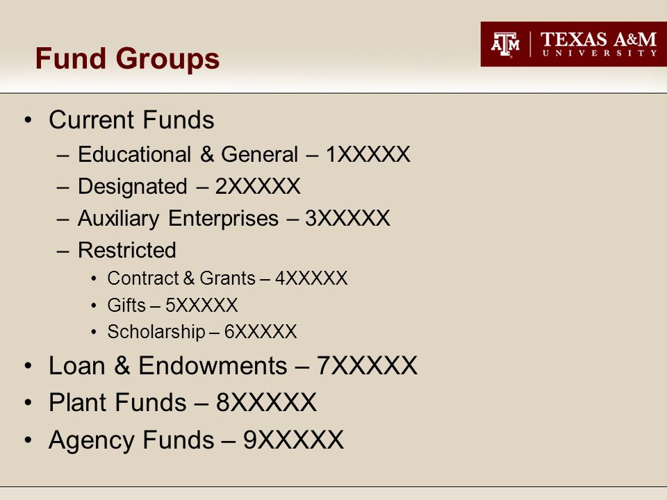 Fund Groups Current Funds –Educational & General – 1XXXXX –Designated – 2XXXXX –Auxiliary Enterprises – 3XXXXX –Restricted Contract & Grants – 4XXXXX Gifts – 5XXXXX Scholarship – 6XXXXX Loan & Endowments – 7XXXXX Plant Funds – 8XXXXX Agency Funds – 9XXXXX