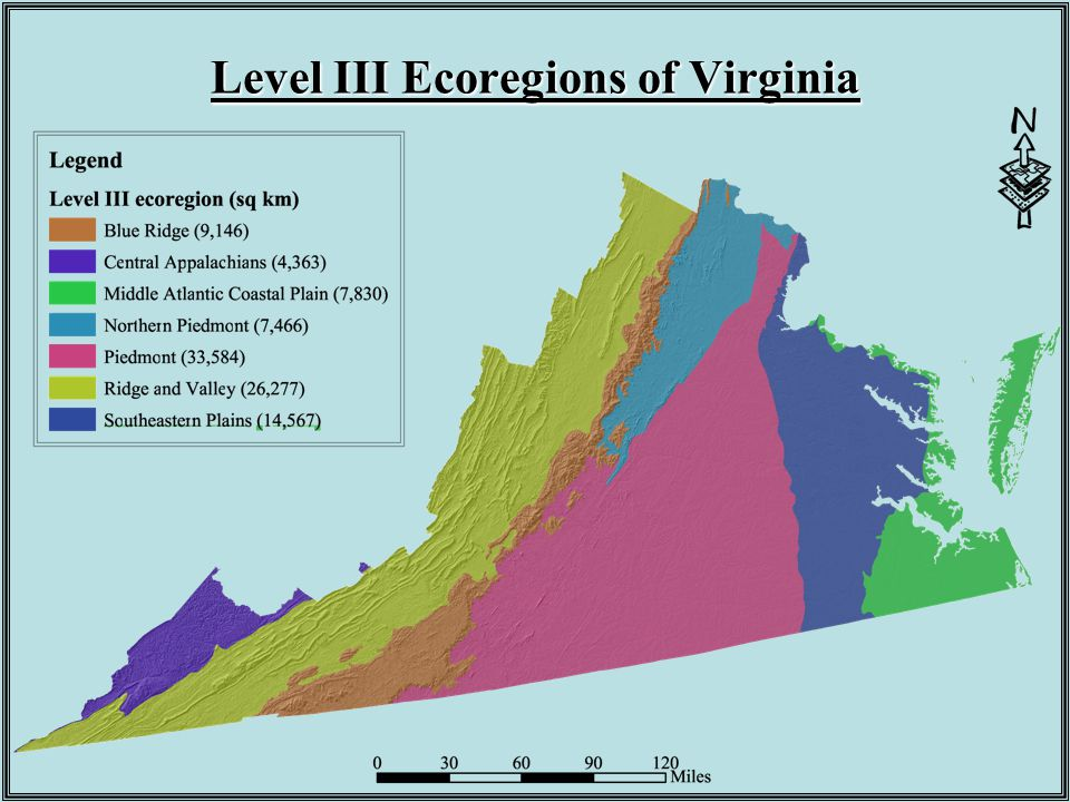 Level III Ecoregions of Virginia