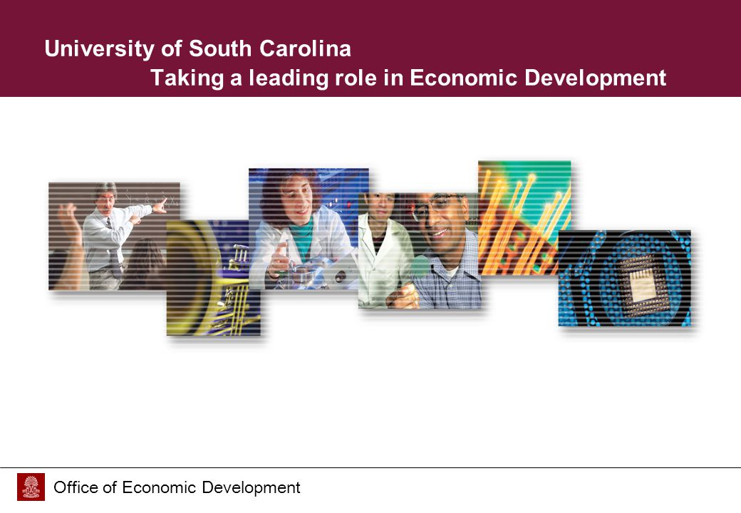 Office of Economic Development University of South Carolina Taking a leading role in Economic Development