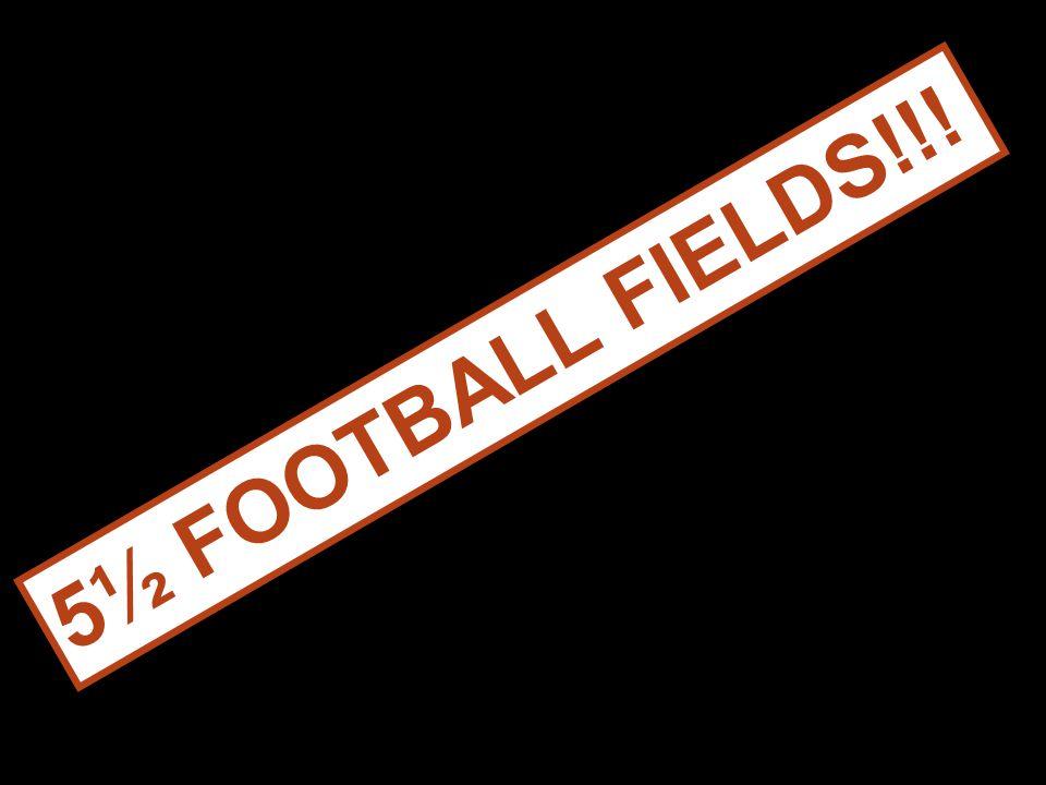 5½ FOOTBALL FIELDS!!!