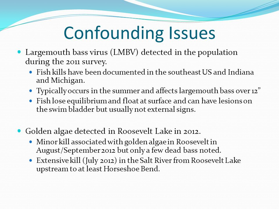 Confounding Issues Largemouth bass virus (LMBV) detected in the population during the 2011 survey. Fish kills have been documented in the southeast US