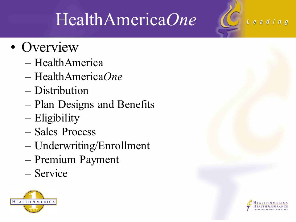 HealthAmericaOne offered to individuals and families by HealthAmerica