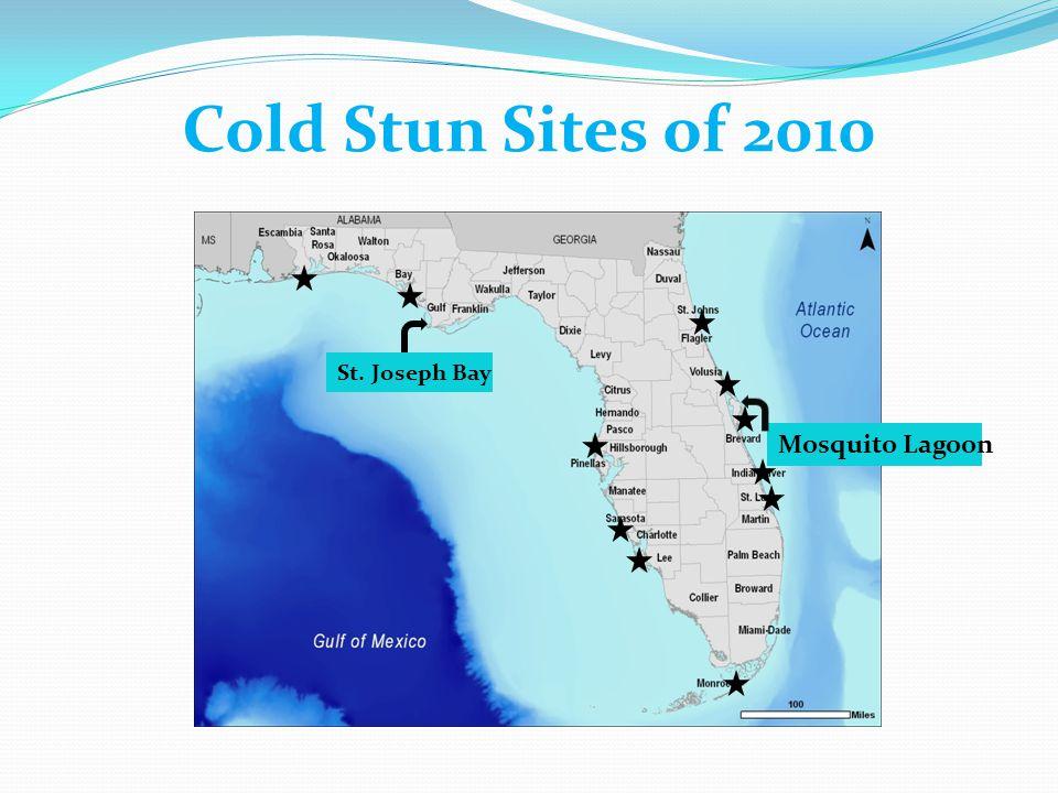 Cold Stun Sites of 2010 St. Joseph Bay Mosquito Lagoon