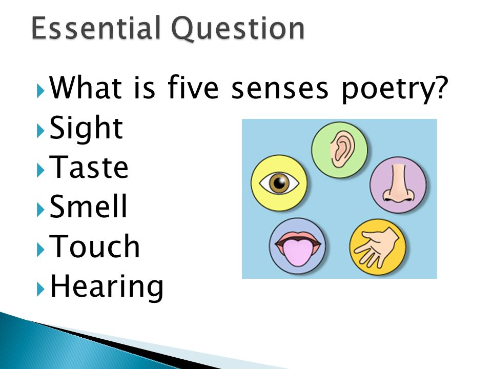  Poetry  Rely on 5 senses  Based on observations  All five senses together