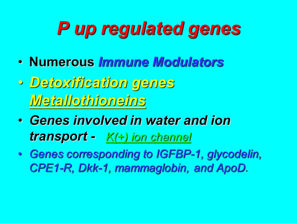 P up regulated genes Numerous Immune ModulatorsNumerous Immune Modulators Detoxification genes MetallothioneinsDetoxification genes Metallothioneins Genes involved in water and ion transport - K(+) ion channelGenes involved in water and ion transport - K(+) ion channel Genes corresponding to IGFBP-1, glycodelin, CPE1-R, Dkk-1, mammaglobin, and ApoDGenes corresponding to IGFBP-1, glycodelin, CPE1-R, Dkk-1, mammaglobin, and ApoD.