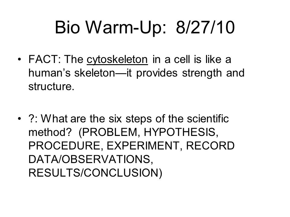 E/E Warm-Up #2: 11/29/10 FACT: The mitochondria is the powerhouse of the cell…it turns food you eat into energy.
